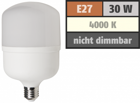 "LED Lampe McShine ""BIG30"" E27, 30W, 2800lm, 100x191mm, neutralweiß"